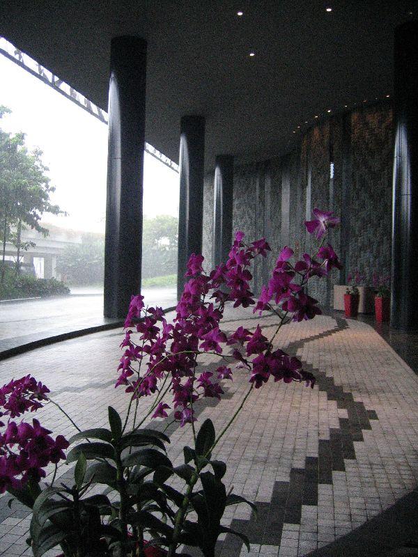 Singapur Crowne Plaza Changi Airport Hotel