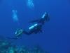Bonaire Tauchurlaub 3. Tag 1. Tauchgang